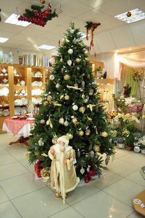 Новогодняя елка в магазине